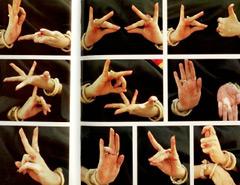 сурдо, жест, язык жестов, жестов