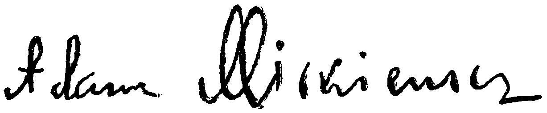Адам Мицкевич, польский, язык